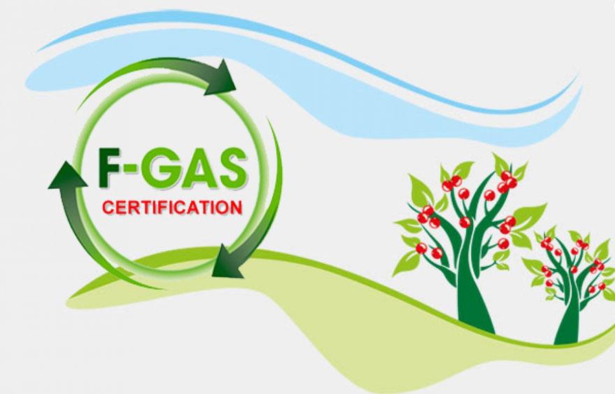 Pubblicato il Decreto Sanzioni per le violazioni alla disciplina FGAS